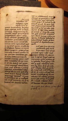 Liber de natura rerum, Thomas de Cantimpré, Ms. Heiligenkreuz 180, f. 167r